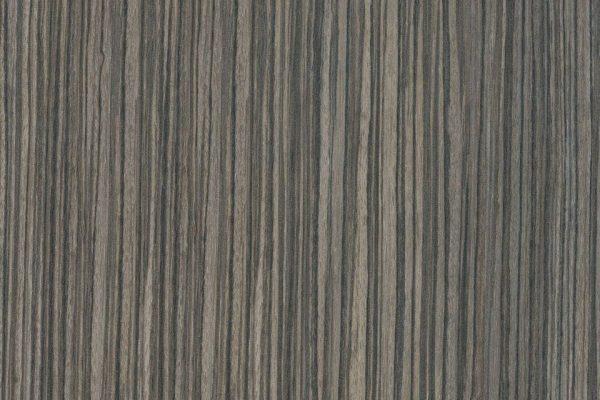 2tone zebrabo